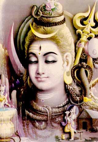My Loving Master Sri Sri