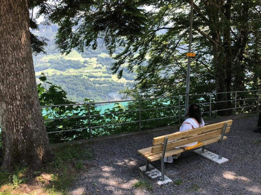 Gurudev Sri Sri Ravi Shankar gazing into the Swiss Alps